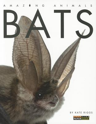 Bats By Riggs, Kate
